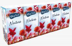 Big Soft Natura papírzsebkendő 3 r. 10db-os